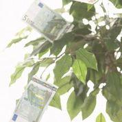 950 Euro sofort Bargeld aufs Konto