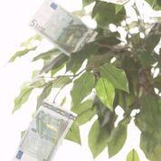 1500-euro-mit-zinsgarantie-heute-noch